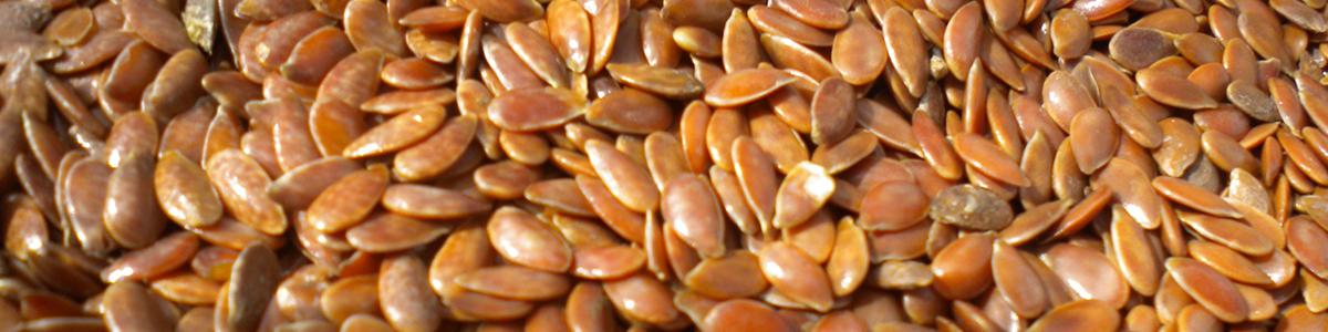 Graines, pepins